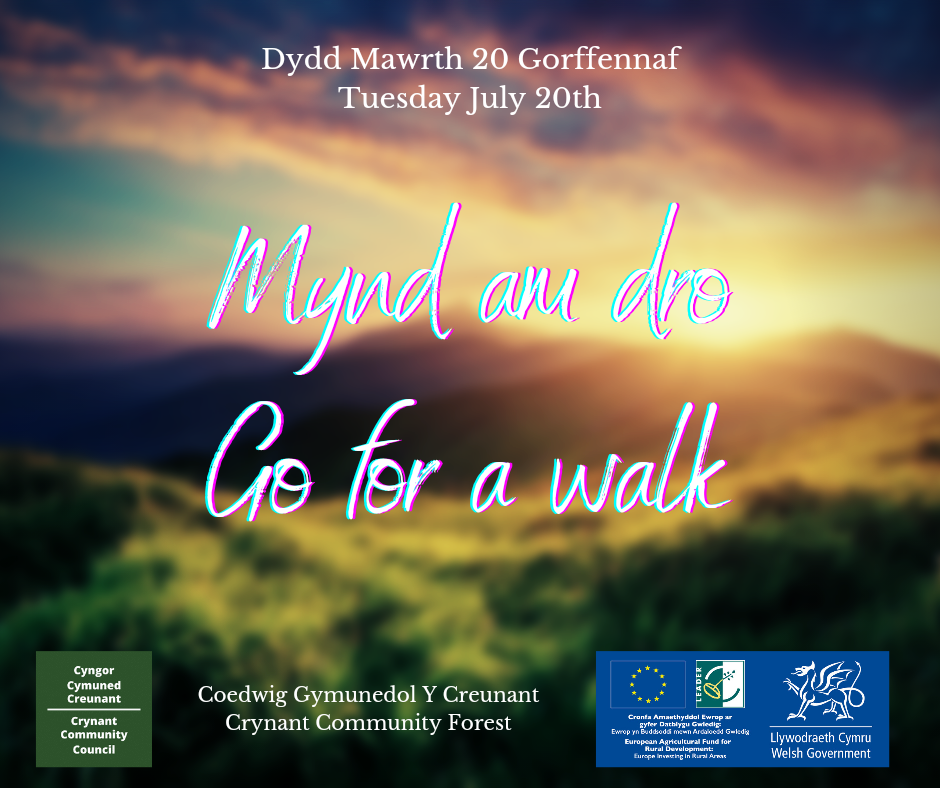 Picture advertising forest walk. Main text reads: Mynd am dro - Go for a walk