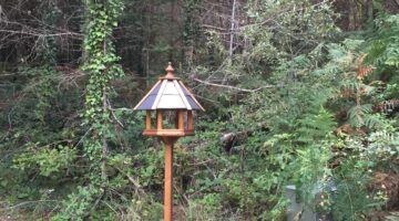Photography of a wooden upright bird feeding table against a forest background